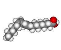 Clasificación de los lípidos