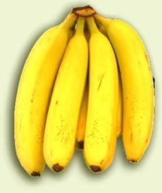 Plátanos para cabello crespo